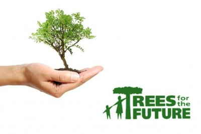 Just ten cents will plant a tree. How many will you plant today.